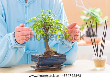 Beautiful woman wearing traditional chinese uniform with bonsai tree - stock photo