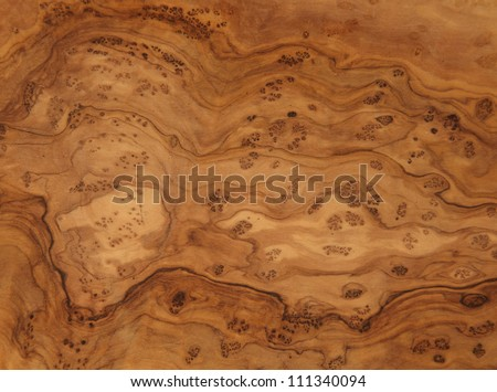 beautiful wood grain - stock photo