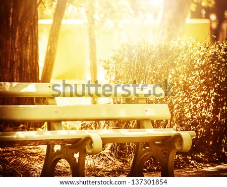 Beautiful wooden bench in the park, bright yellow sun light, place for resting, peaceful morning, summer time - stock photo