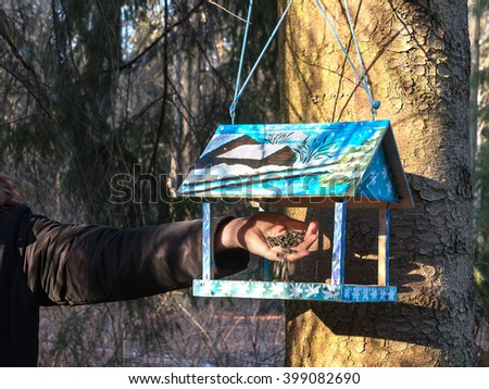 Beautiful wooden birdhouse feeder (nesting box) hanging on a tree in the park. Taking care of animals. A man feeding the birds. Spring is coming. - stock photo