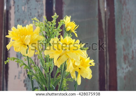 Beautiful yellow flower aster, daisy on vintage wood background. - stock photo