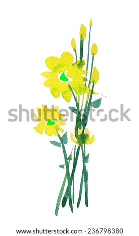 beautiful yellow flower watercolor hand-painted, isolated on white
