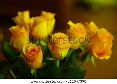 beautiful yellow roses surrounded by green leaves  - stock photo