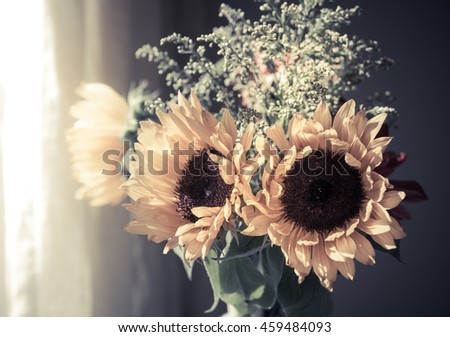 Beautiful yellow sunflowers in a vase on a white background. Summer flowers in the sunshine