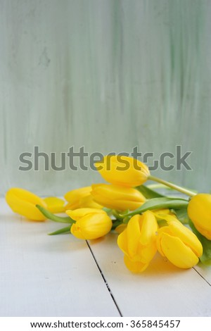 Beautiful yellow tulips on painted background