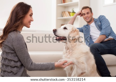 Beautiful young married couple is playing with a dog. The woman is holding a paw of the animal. The man is sitting on sofa and smiling - stock photo