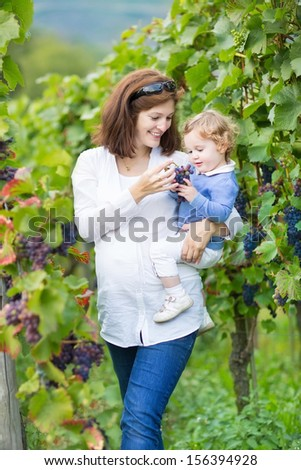 Beautiful young pregnant mother and her adorable baby daughter walking in colorful autumn vine yards trying ripe grapes - stock photo