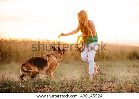 Beautiful young red-haired woman playing with German shepherd in a field at sunset