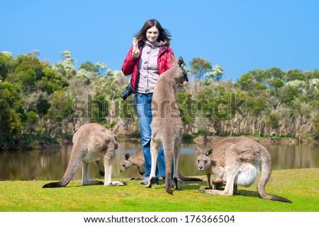 Beautiful young woman feeding kangaroos in Phillip Island Wildlife Park, Australia  - stock photo