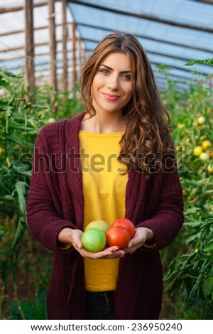 Beautiful young woman gardening and smiling at camera holding tomatoes. Greenhouse produce. Food production. - stock photo