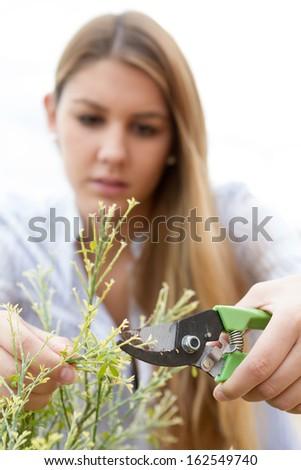 Beautiful young woman gardening at home - stock photo
