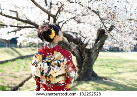 Beautiful young woman in Japanese Kimono viewing cherry blossoms in the garden. Spring in Japan. - stock photo