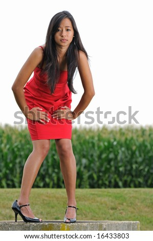 Beautiful young woman in red dress leaning in in front of corn field - stock photo