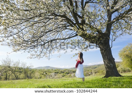 Beautiful young woman smelling the blossom of a cherry tree in  bloom in springtime - stock photo