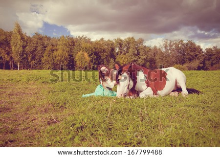 Beautiful young woman with a horse in the field. Girl on a farm with animal. Luxury woman outdoors  - stock photo