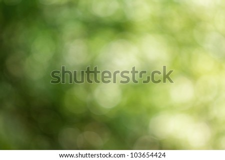 Beautifully green abstract blurred background - stock photo