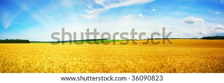 beautifully landscape - stock photo