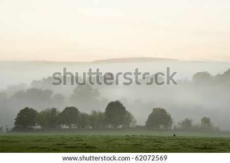 Beauttiful stirring forest and field scene with layers of mist and fog before sunrise - stock photo
