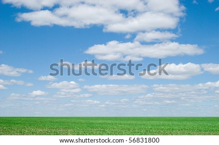 beauty blue sky and green grass - stock photo