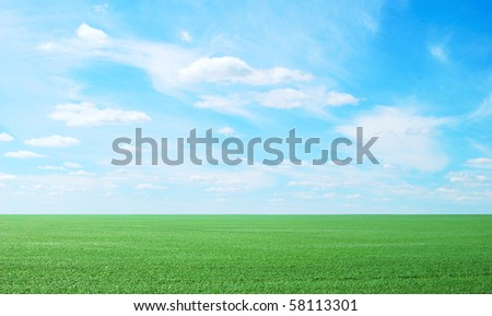beauty blue sky and green grass
