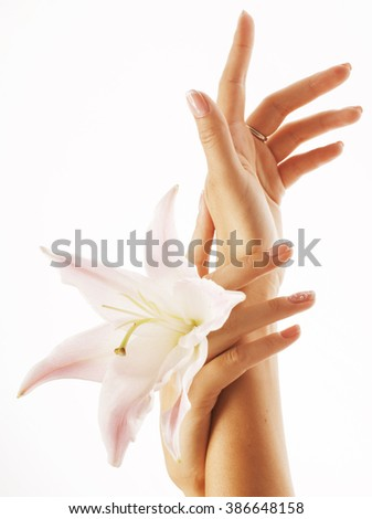 beauty delicate hands with manicure holding flower lily close up isolated on white perfect shape - stock photo