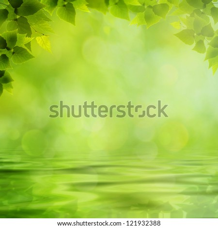 Beauty natural backgrounds with reflection on the water surface - stock photo
