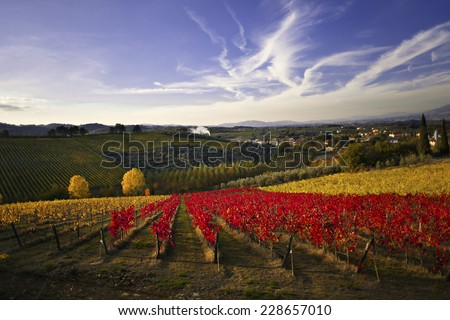 Beauty of vineyards in autumnal colors ready for harvest and production of wine. Chianti, Tuscany, Italy