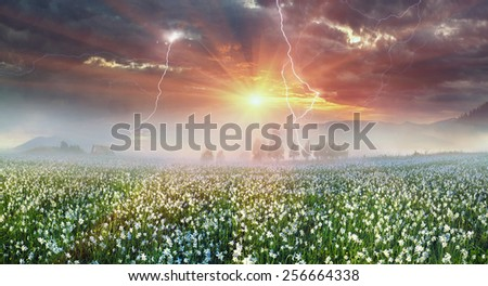 Beauty panorama of mountain meadows in Transcarpathia - is the abundance of vegetation on the background of beautiful tops and interesting weather conditions. Thunder and of lightning danger  tourists - stock photo