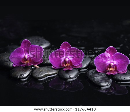 Beauty row of three red orchid and stone with reflection - stock photo