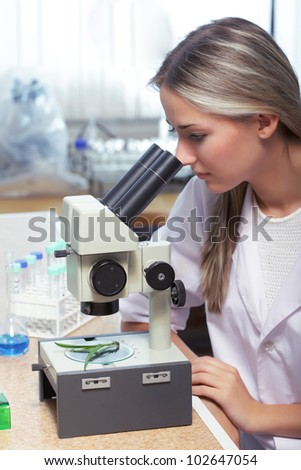 beauty scientist in chemical laboratory - stock photo