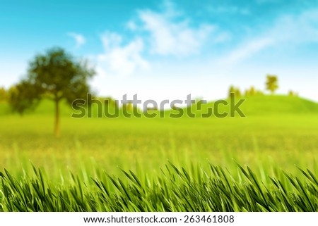 Beauty summer landscape with green grass and hills under shiny skies - stock photo