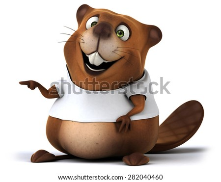 Beaver with a white tshirt - stock photo