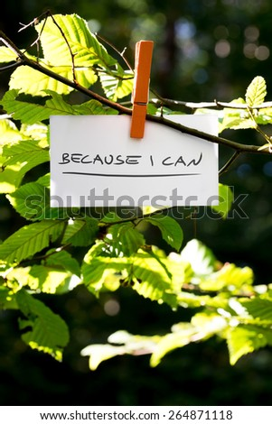 Because i can inspirational message written on a white card hanging on a green leafy branch by a wooden clothes peg. - stock photo