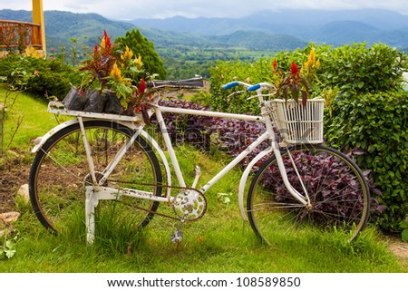 bed for flowers in the form of a bicycle