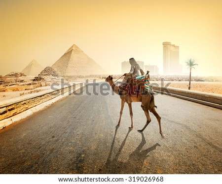 Bedouin and camel on asphalted road to Giza and pyramids - stock photo