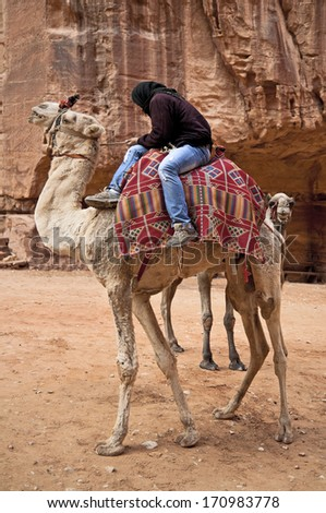 Bedouin on camel. Travel on the territory of the ancient city of Petra, Jordan. 01.01.2014. - stock photo