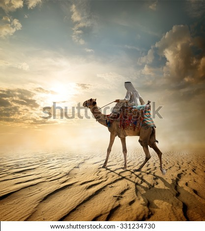 Bedouin rides on camel through sandy desert - stock photo