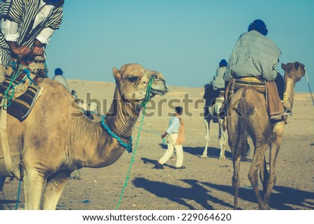 Beduins leading tourists on camels at short tourist tour around the beginning so called Doors of Sahara desert,Douz,Tunisia