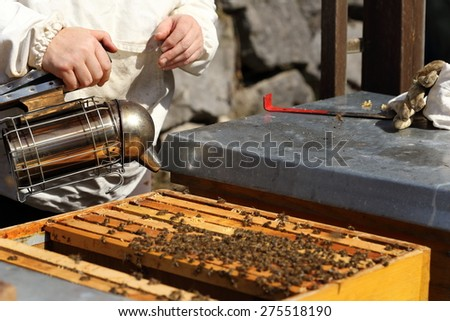 bee keeper with smoker in hand on bee hive - stock photo