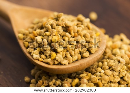 Bee pollen closeup - stock photo