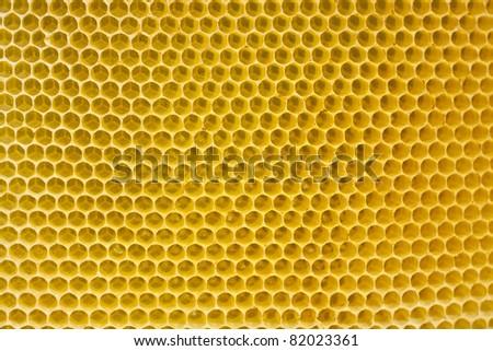 Bee wax - stock photo