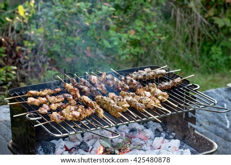 Beef and chicken satay on barbecue grill cooked family dinner,selective focus