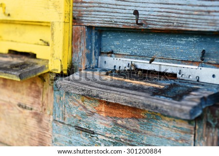 Beehive, close up. - stock photo