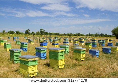 Beehives in a field  - stock photo