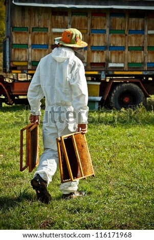 Beekeeper at work in his apiary - stock photo