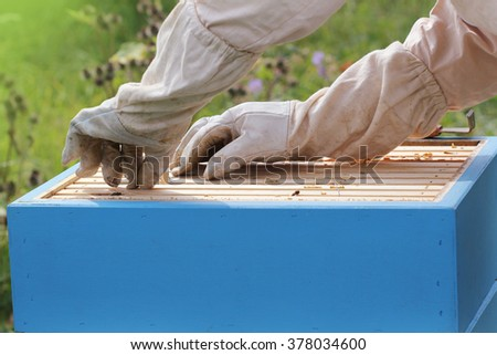 Beekeeper is working with bees in the apiary - stock photo