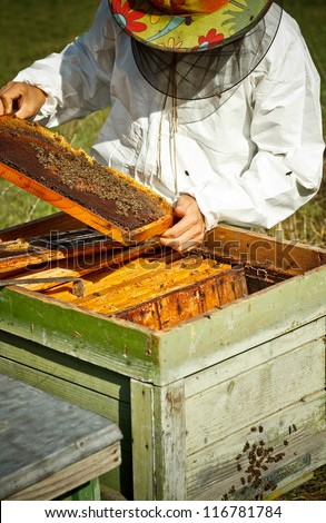 Beekeeper working in his apiary - stock photo