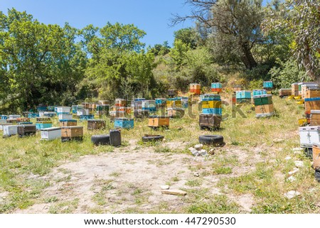 Beekeeping on Crete. Wooden beehives on tires in a landscape between the south and the north of the Island. The bees should search thyme blossom. Honey is a specialty from the mountains on Crete - stock photo