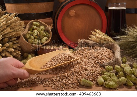 beer and beer barrel, hops, wheat, grain, barley and malt