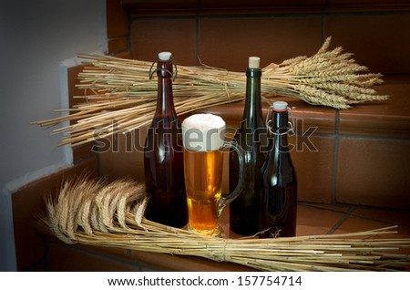 beer bottles with wheat - stock photo